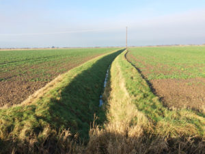 drain prairie champ hainaut belgique